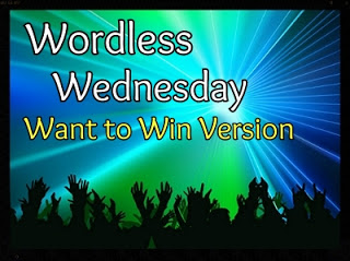 #WW Wordless Wednesday + Linky and Giveaway 2/27
